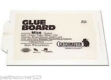 144 Catchmaster Peanut Butter Flavor Glue Boards 72MB - Mouse Control