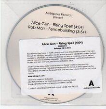 (DD718) Alice Gun, Rising Spell / Rob Marr, Fencebuilding - 2012 DJ CD