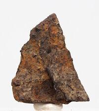 RARE Gibeon Iron Meteorite COMPLETE CRYSTAL Complete Individual GENUINE specimen