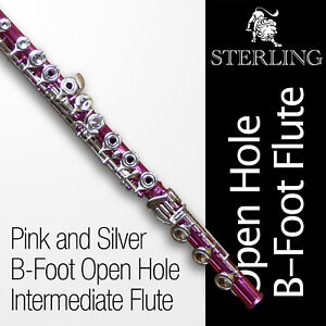 OHB FLUTE Pink 17 Gold Keys OPEN HOLE B-Foot • BRAND NEW • Free Express Post •