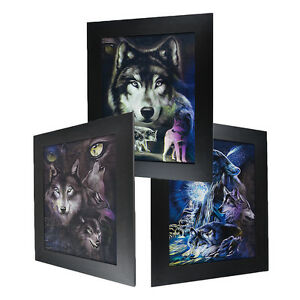 3 Dimension 3D Lenticular Picture Fierce Wolf Pack Howling Full Moon Night