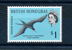 BRITISH HONDURAS 1962 DEFINITIVE (MAGNIFICENT FRIGATEBIRD) SG211 MNH