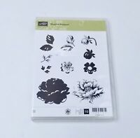Stampin Up Stippled Blossoms 126747 Rubber Stamp Set Retired Clear Mount New