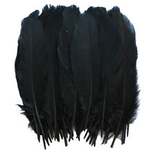 Goose Satinettes loose feathers Crafting Decoration Halloween Costume