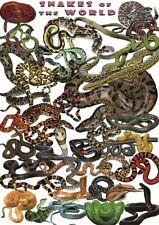 PLAKAT RELAKSUJĄCY Węże - NOWY  plakat A3 (29.7 x 42 cm)