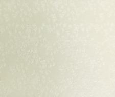 10 x a4 Stardream Opale farfalla in rilievo Farfalla Design 280gsm cartoncino