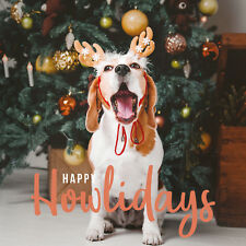 Happy Howlidays - Beagle Christmas Card