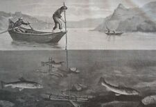 Salmon traps.....wood engraving...1860s