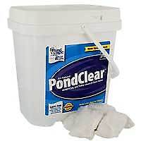 Airmax PondClear Beneficial Bacteria - 12 Packets