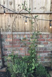 Rustic Metal Garden Rose Arch, Rose Climbing Plant Support Rusty Rustic Trellis