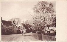 Almond Blossom & Horses, LONG MARSTON, Hertfordshire