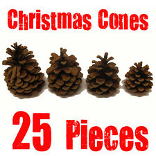 PACK OF 25 REAL AUSTRIACA PINE CONES - USE TO DECORATE CHRISTMAS WREATHS & POTS