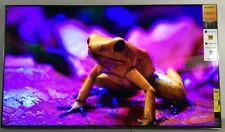 "Sony X950H 65"" 4K Smart TV UHD HDR LED 120Hz TRILUMINOS XBR65X950H *NOB*"