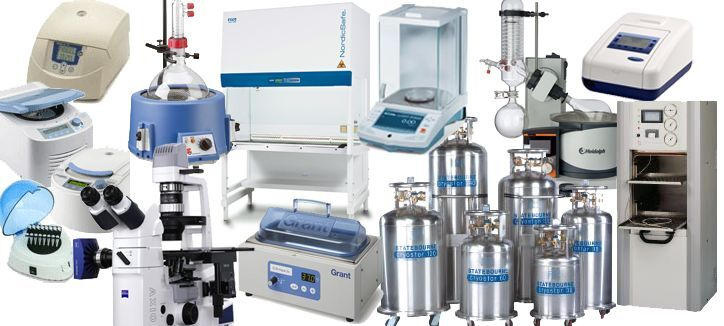 www.asustechnologies.com