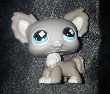 LPS Littlest Pet Shop #836 Gray Chihuahua Teal Eyes Dog Figure