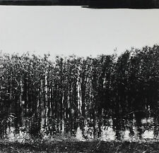 Ralph Eugene MEATYARD: Motion-Sound 1968 / Ptd 1977 / Ed of 2 / Estate STAMPED