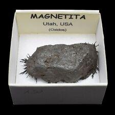 MAGNETITA magnetica (Utah, USA) #1523