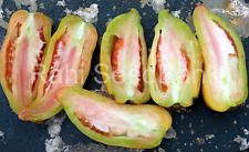 Ram's Horn Tomato - A Rare Tomato Plant that Produces Horn Shaped Tomato!