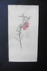 FRENCH SCHOOL 19thC - STUDY OF FLOWERS - WATERCOLOR SIGNED LISBONNE