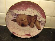 GOLDEN RETRIEVER DOG   PLATE  -  DO NOT DISTURB        FRANKLIN MINT