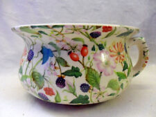 Medium sized chamber pot or planter in hedgerow bramble design