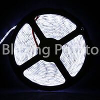 LumenWave 5M 5050 IP65 Waterproof Flexible 300 LED Strip Lights -White PCB-White