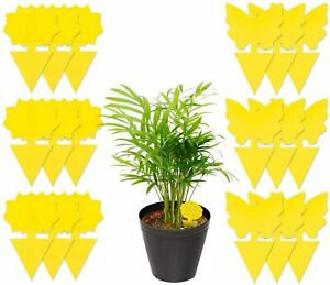 Sticky Fruit Fly Traps, Fungus Gnat Killer Trap use for Indoor Outdoor, 18 pcs
