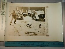 Rare Historical Original VTG 1944 American Soldier Chases Pigs Metz France Photo