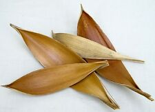 5 Stk Kokosblatt braun Kokosschale Dekoschale Cocosschale Deko Schale Blätter