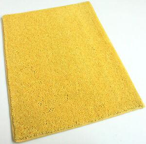 Sunny Daze 25.5 oz Plush Cut Pile Indoor Carpet Area Rug