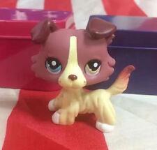 Littlest Pet Shop LPS 515 Plum Cream Collie Dog Different Color Eyes Toys