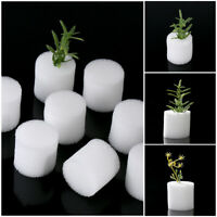 Esponja de guardería Macetas Bandejas De Semillas Sodropess Hydroponic Cultivo