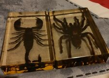 More details for real bird eating spider and giant forest scorpion in resin