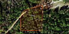 2.53 Acres of Land in Polk City, FL, Foreclosure Ready, No Reserve, $1 Bid,