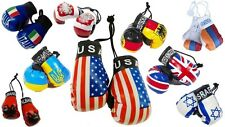 International Country Flags Mini Boxing Gloves Home Car Hanger Fans Sport Gift
