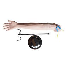 Adult Venipuncture Injection Arm Intravenous Simulator Manikin Healthcare Model