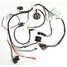 Complete Electrics Wiring Harness Coil Stator for Dirt Bike ATV QUAD 200cc 250cc