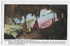 New Market VA Skyland Endless Caverns Vintage Postcard