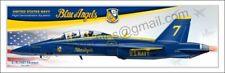 CUSTOMIZATION  for Airplane Panoramic Poster