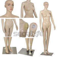 Realistic Female Mannequin Full Body Manikin Dress Form Display with Base
