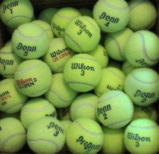 45 Used Tennis Balls Great For Your Dog