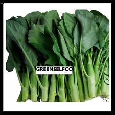Chinese broccoli,kale,kailaan, spinach seeds ,gai lan (Cải làn) .1OZ =5500 seeds