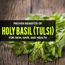 Holy Basil Capsules 100% Organic Powder TCM Luo Le Adaptogen Dr Sebi