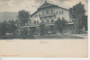 Ansichtskarten Rumänien  Sinaia  Hotel Sinaia