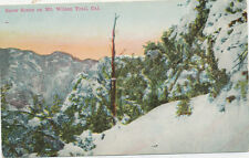 B8936 1910 POSTCARD  SNOW ON TRAIL  MT WILSON CA