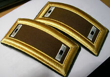 Nice PR of Military ARMY MEDICAL CORPS ? WO1 Shoulder Straps for DRESS Uniform