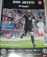 2015/16 1.Bundesliga Eintracht Frankfurt - TSG Hoffenheim