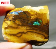 Great 20.7 gram boulder opal rough slab - Australia