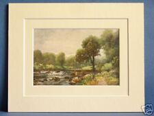 BALLINTEMPLE RIVER SLANEY LEINSTER IRELAND c1920 VINTAGE DOUBLE MOUNTED PRINT