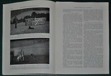 1940 SHEEPDOG TRIALS in Wales magazine article, Cambrian Stakes Border Collies